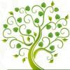 Agriturismo-Agricampeggio al Bagolaro